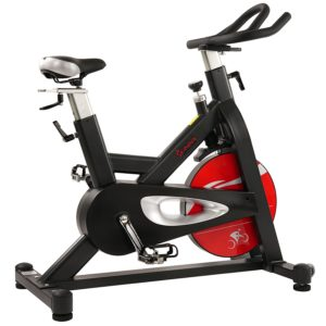 Sunny Health and Fitness Evolution Pro Magnetic Indoor Cycling Bike Review